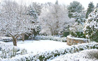 Zó maak je de tuin klaar voor de herfst en winter!
